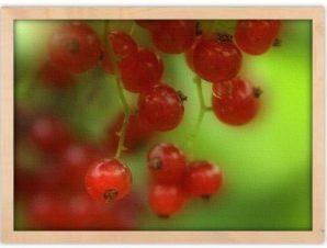 Κατακόκκινα φρέσκα φρούτα Φαγητό Πίνακες σε καμβά 40 x 60 cm