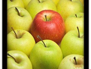 Φρέσκα μήλα Φαγητό Πίνακες σε καμβά 46 x 55 cm